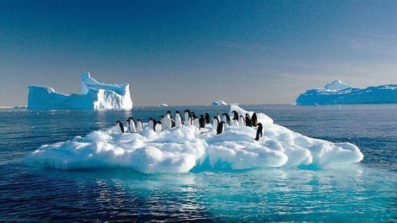 ¿De quién es la Antártida?