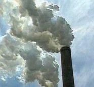 El COVID -19 y su (innegable) vínculo con el medio ambiente