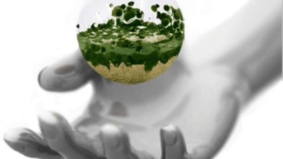 Biodiversidad y globalización